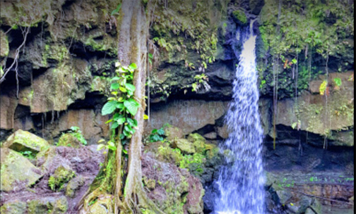 Dominica is ready to be rediscovered