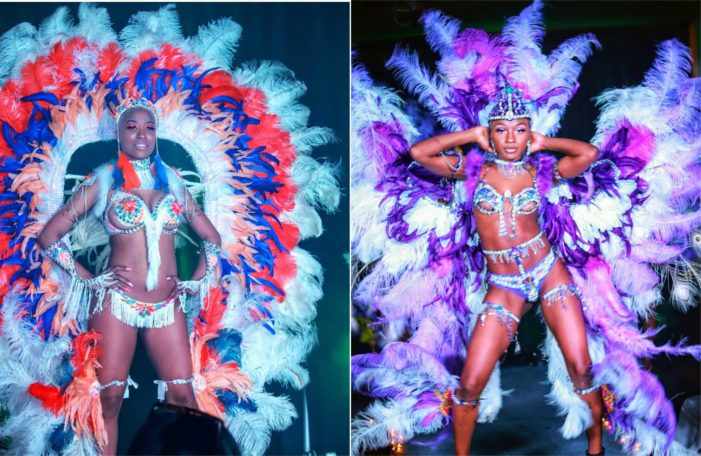 Caribbean Island Mix presents a wide variety of styles
