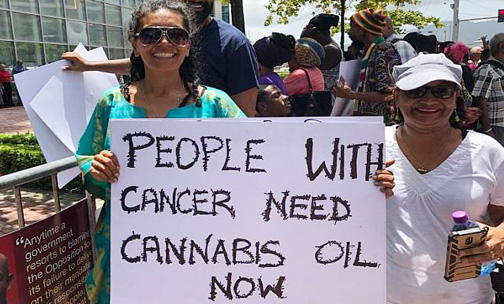"T&T advocates say: ""Enact Cannabis medical legislation now"""