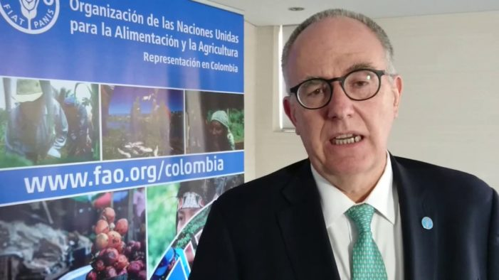 Hunger in Latin America, Caribbean could  affect 67 million people by 2030
